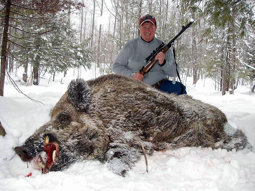 猟銃で狩猟をするにはどうしたらいいの ...